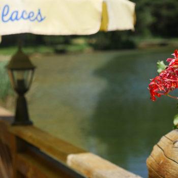 Bar Restaurant du Lac - Les Alberts